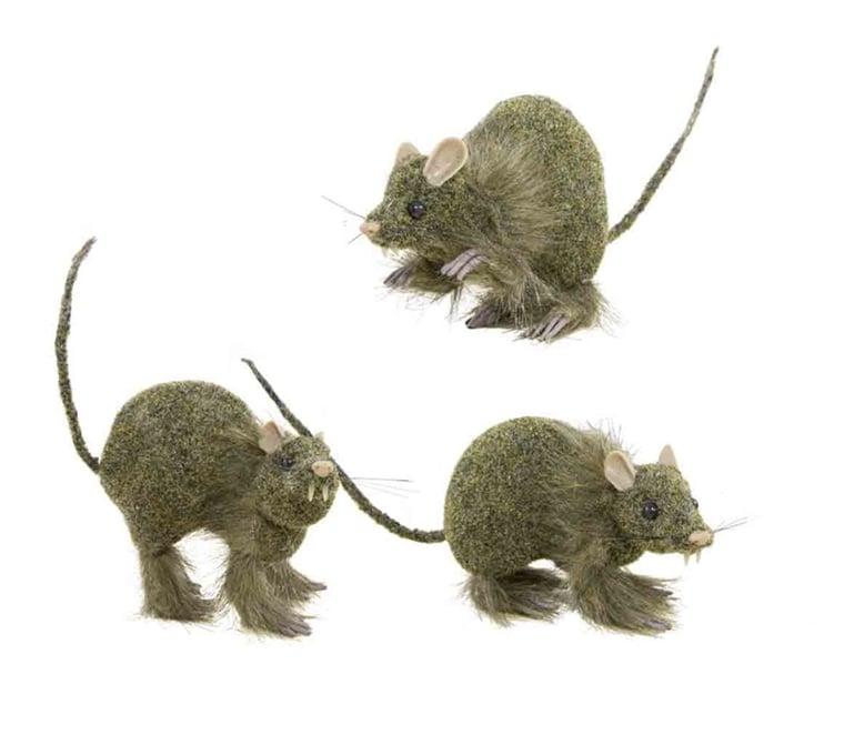 Myydään Rottia